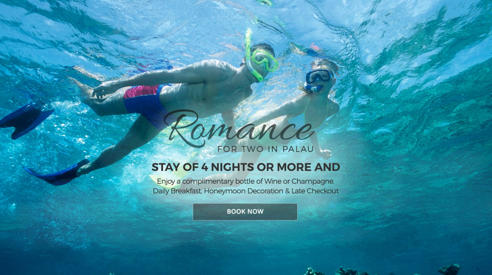 Romance for Two Special at the Cove Resort Palau